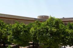 Arg-e Karim Khan - Garden