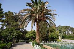 Baq-e Eram - Garden