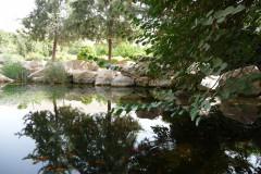 Baq-e Eram - Garden - Fish Pond