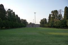 Baq-e Afifabad - Garden - Lawn