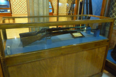 Baq-e Afifabad - Museum - Rifle Mauser - 19C Germany