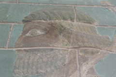 National Museum of Iran - Painted Wall - Persian Warrior