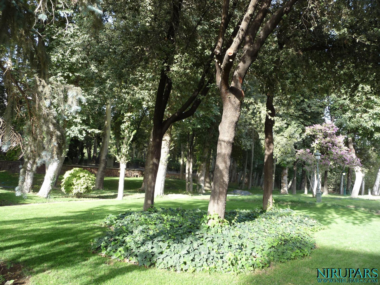 Niavaran Palace Complex - Park