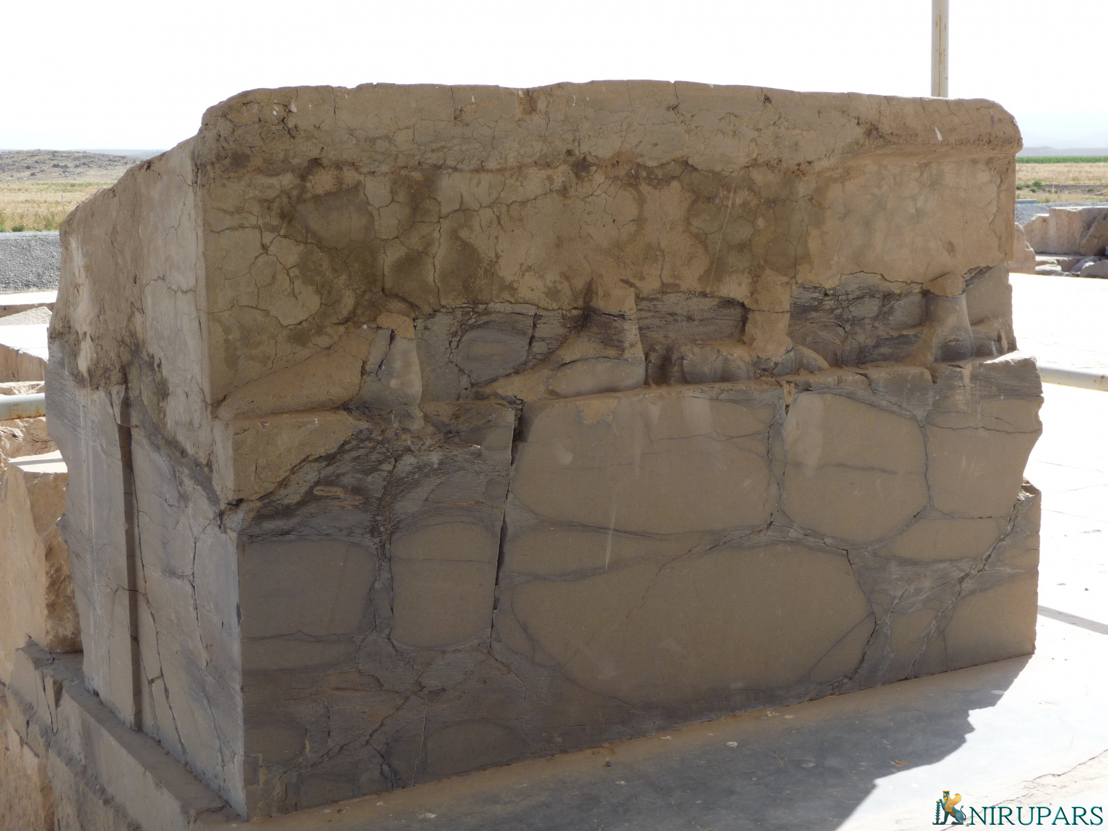 Pasargadae - Palace S - Audience Hall - Relief