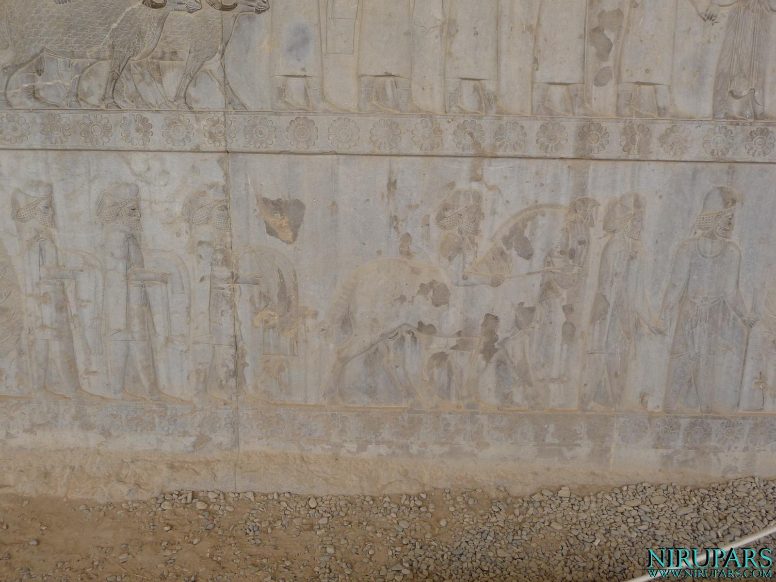 Persepolis - Apadana - East Portico - Delegation Cappadocia
