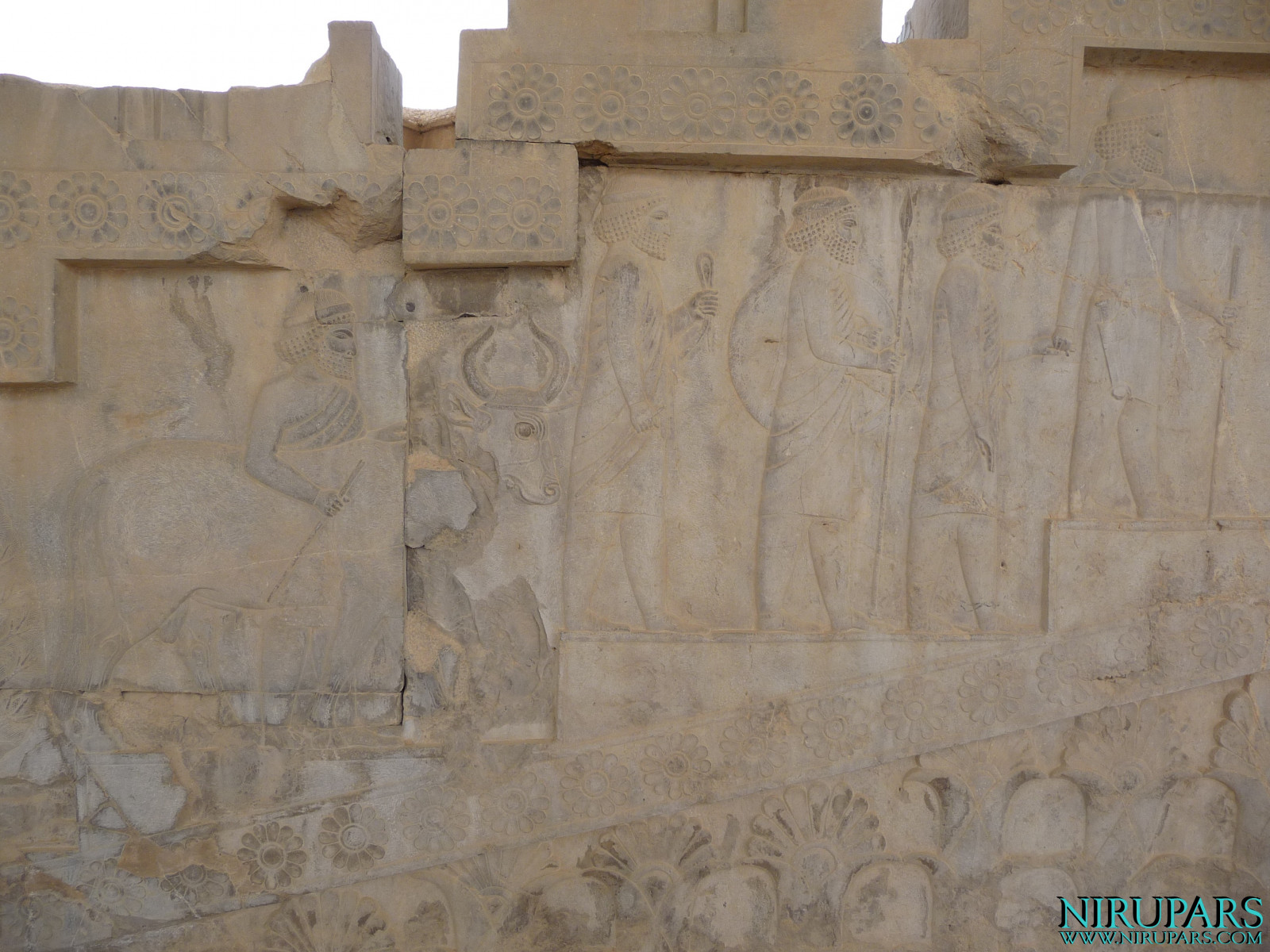 Persepolis - Apadana - East Portico - Delegation Caria