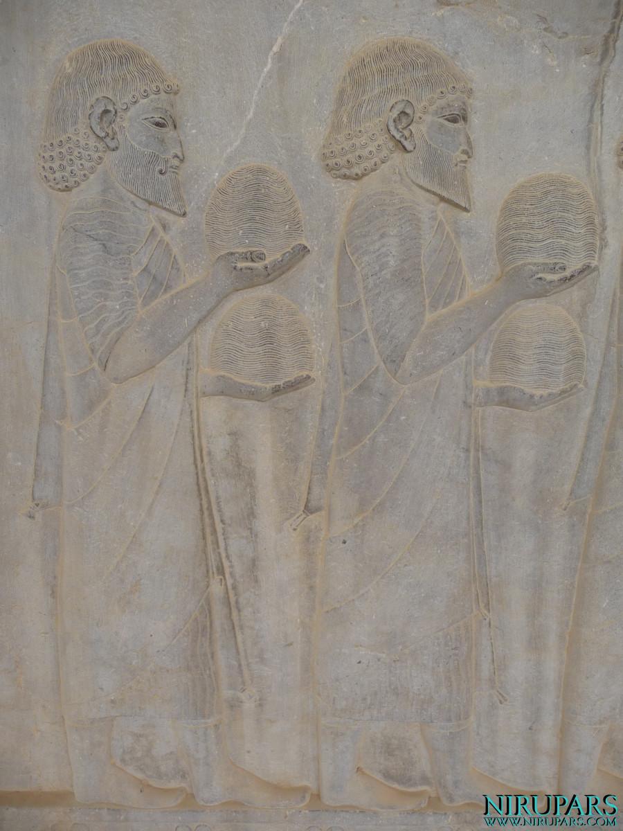 Persepolis - Apadana - East Portico - Delegation Ionia - Wool