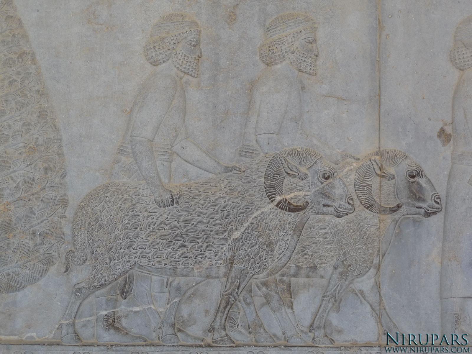 Persepolis - Apadana - East Portico - Delegation Syria_2