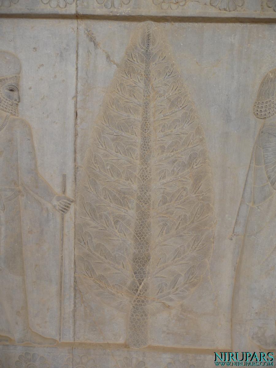 Persepolis - Apadana - East Portico - Relief Tree