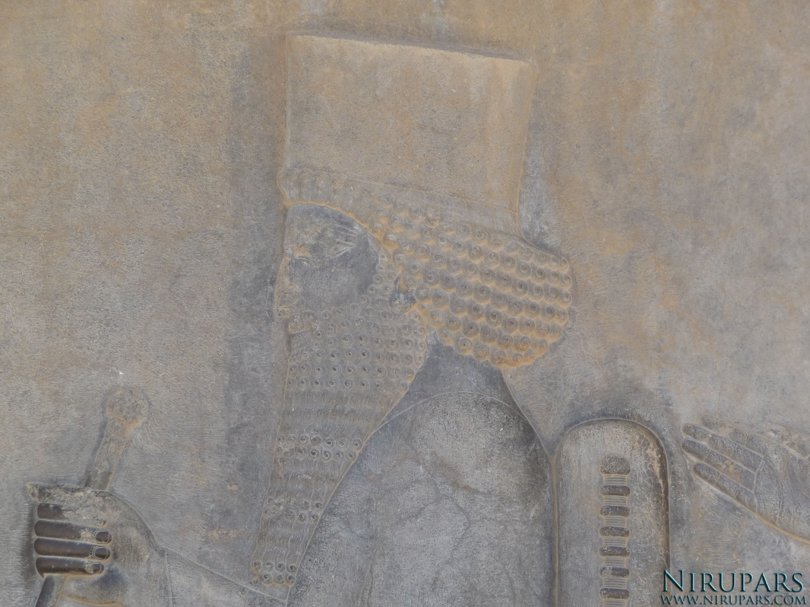 Persepolis - Relief - Throne Relief - Darius the Great