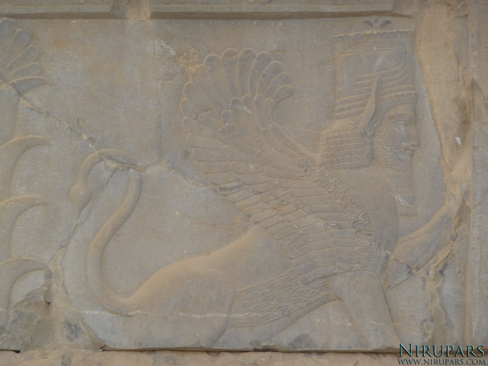 Persepolis - Relief - Winged Human Lion