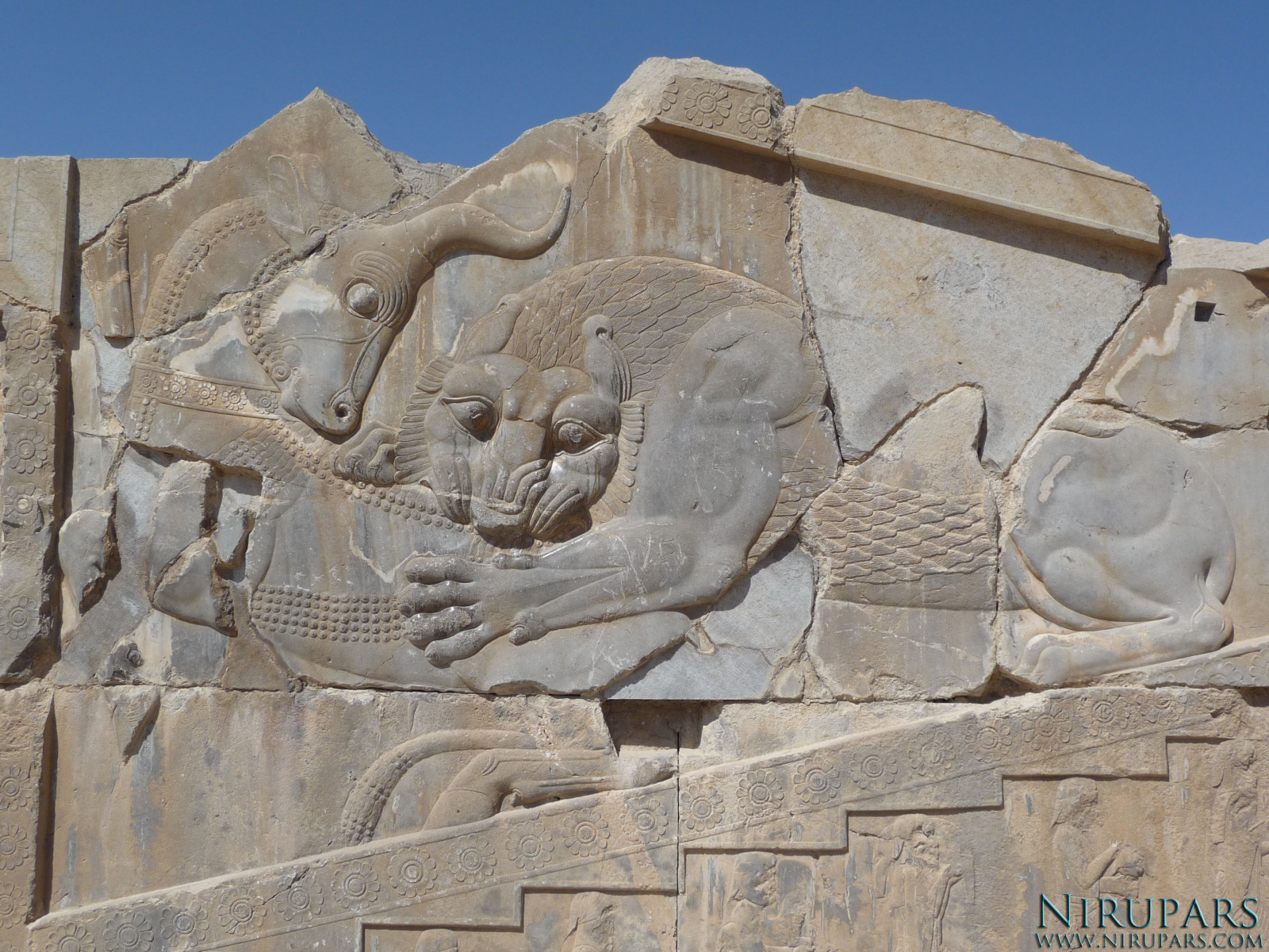 Persepolis - Xerxes Palace - East Portico - Relief Lion Bull