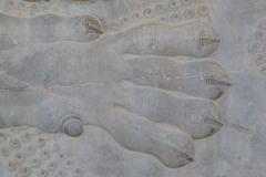 Persepolis - Apadana - East Portico - Relief Lion