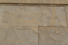 Persepolis - Apadana - East Portico - Charioteer and Chariot