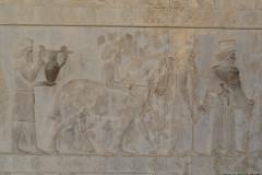Persepolis - Apadana - East Portico - Delegation Armenia