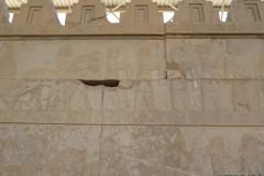 Persepolis - Apadana - East Portico - Delegation Sagartia