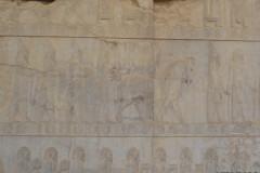 Persepolis - Apadana - East Portico - Delegation Scythia