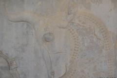 Persepolis - Apadana - East Portico - Relief Bull