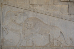 Persepolis - Apadana - East Portico - Relief Lion Bull Fight