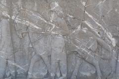Persepolis - Apadana - North Portico - Delegation Cappadocia - Horse