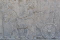 Persepolis - Apadana - North Portico - Delegation Lydia - Chariot