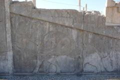 Persepolis - Apadana - North Portico - Relief Lion Bull