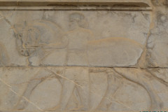 Persepolis - Relief - Royal Servants - Equerry