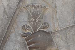 Persepolis - Relief - Throne Relief - Lotus Blossom - Darius the Great