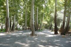 Sadabad Palace Complex - Garden